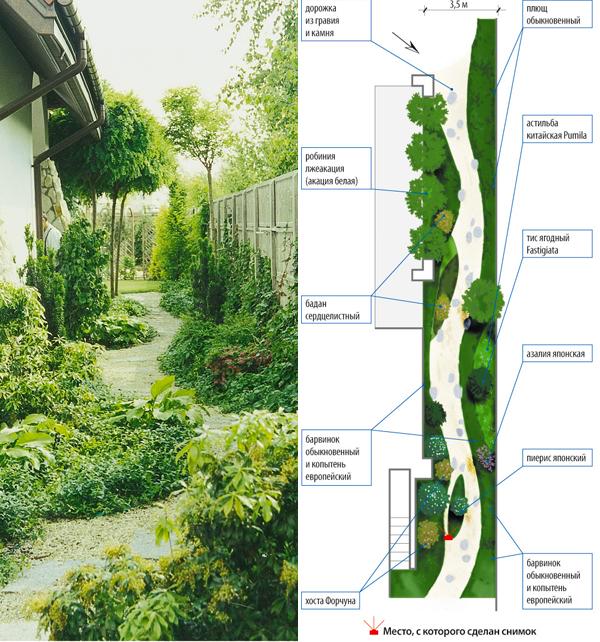 Дизайн проект ландшафта узкого участка