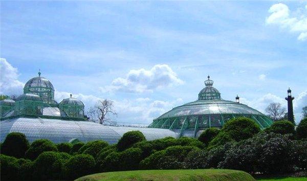 Королевская оранжерея (Бельгия)