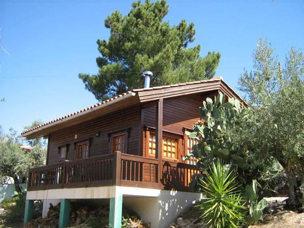 Древесина для строительства дома: технические требования