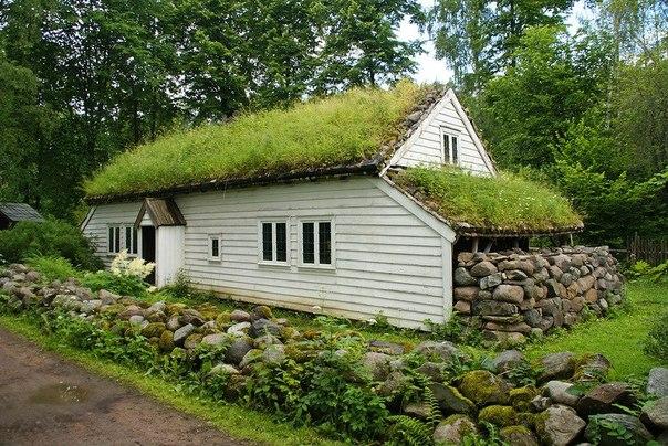 Дома с травой на крыше, фото травяных крыш