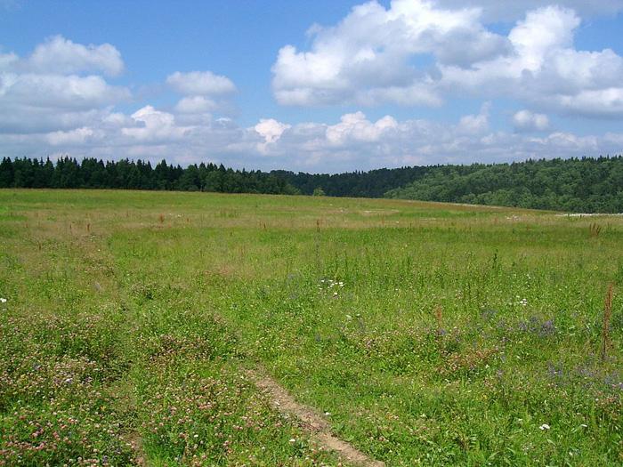 Целевое или разрешенное использование земли: как его поменять?
